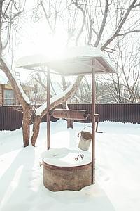 bé, l'hivern, neu, jardí
