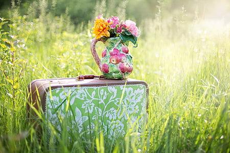 Bodegó d'estiu, maleta en camp, herba, l'estiu, paisatge, l'aire lliure, gerra de flors