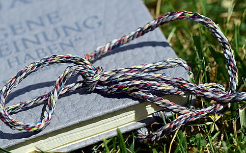book, close, meadow, grass, in the, read, band