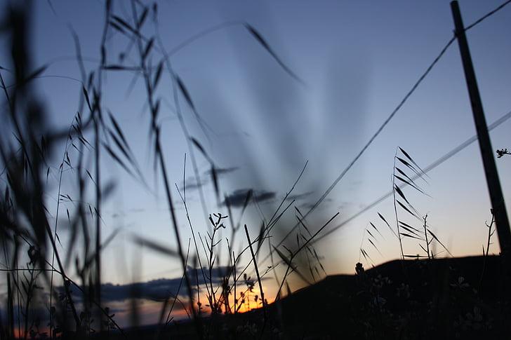 capvespre, natura, posta de sol