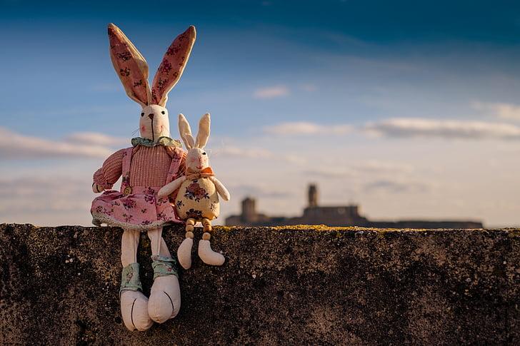 conill, animals, animal de companyia, joguines per a nens, peluix, cel, Setmana Santa