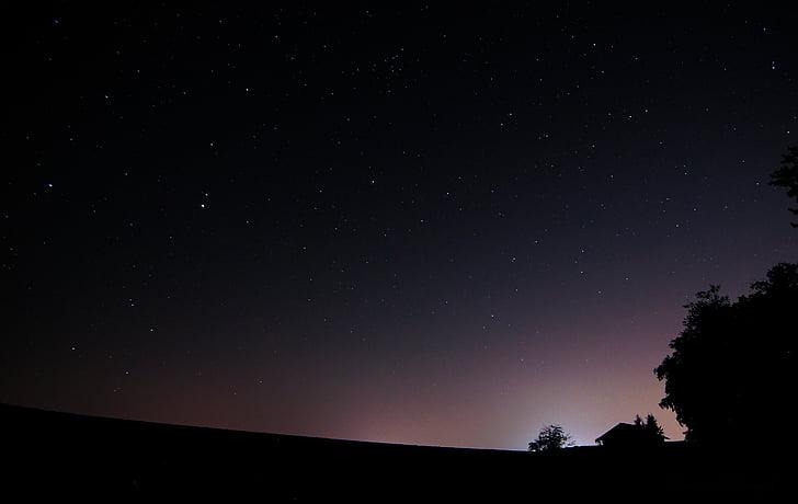 natt, skog, nattehimmelen, Star, Light forurensning, hjem, astronomi