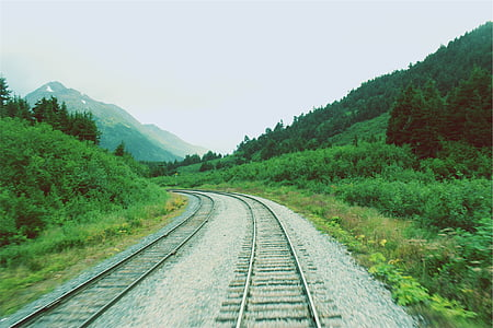 gray, train, rails, green, trees, daytime, railroad