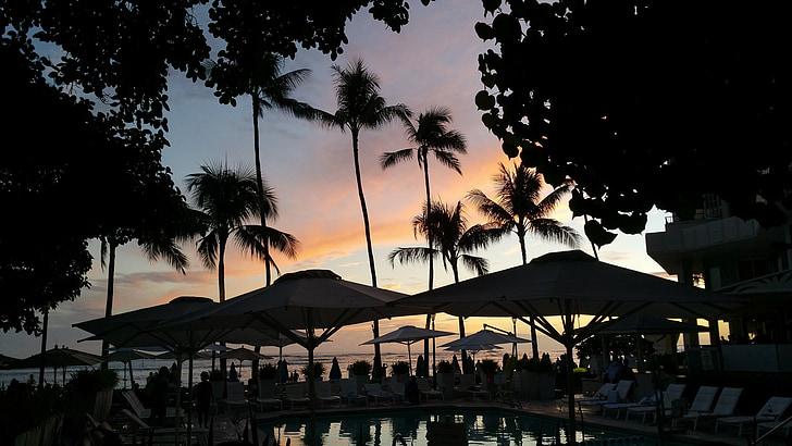 hoàng hôn, Bãi biển, Hawaii, lãng mạn, Bãi biển Hawaii, mùa hè, nhiệt đới