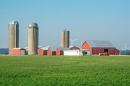 farm, silos, agriculture, rural, barn, country, field