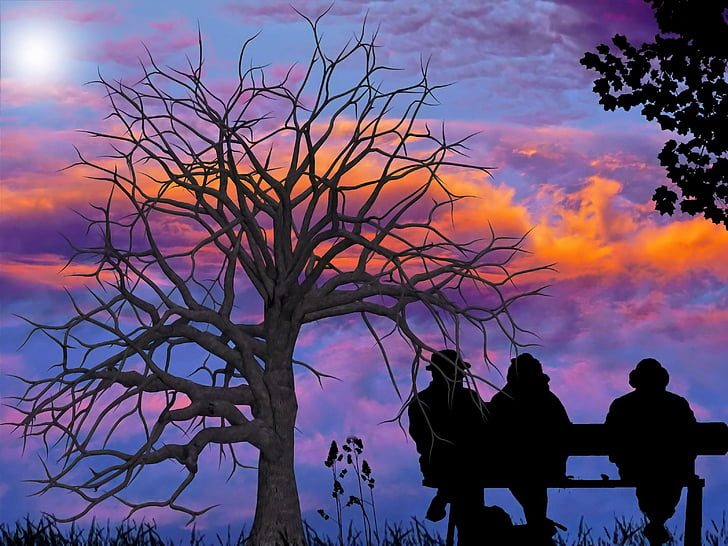 sky, bank, people, tree, clouds, view, sit
