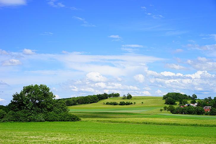 Swabian alb, paisatge, natura, altiplà ALB, ochsenwang, parc natural, àrea protegida paisatge