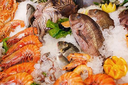 sjømat, mat, sunn, sjøen, frisk, fisk, Restaurant