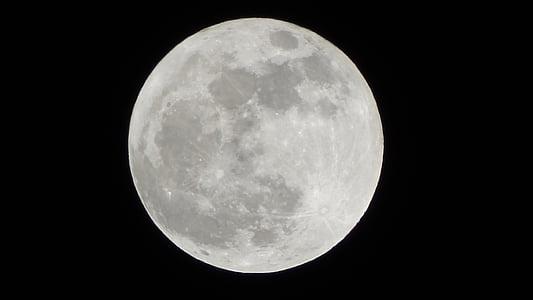 Lluna, cel, cràter, nit, l'astronomia, Lluna plena, superfície de la lluna
