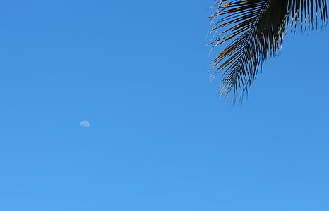 Mond, Tag, blauer Himmel, klarer Himmel, Sommer, Himmel, Mond-Tag