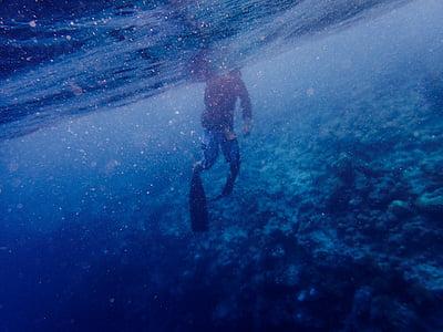 ocean, sea, person, underwater, undersea, swimming, water