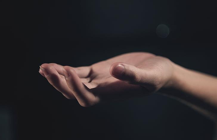 käsi, Palm, valo, käsi kädessä, käsi, ihmisen, yhdessä