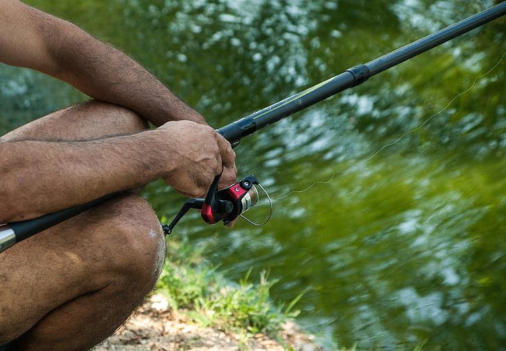 rybár, navijak, Rybárstvo, jazero, rybník