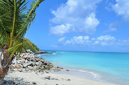 Isla, Paraíso, mar, vacaciones, tropical, Caribe, viajes