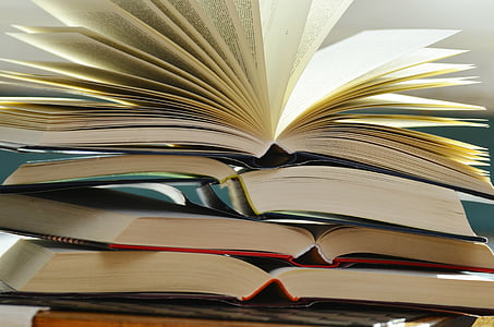 llibres, pàgines del llibre, llegir, literatura, navegar, llum, document