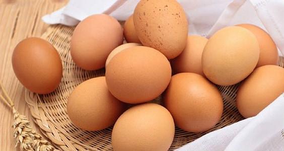 quả trứng, quả trứng, thực phẩm, khỏe mạnh, ăn, trắng, Bữa sáng