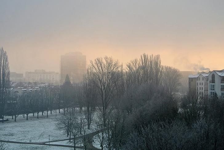 udu, udu, talvel, udune, Daybreak, härmas, külm