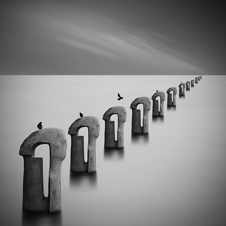 Abstrakt, abstraktní Foto, umění, ptáci, černobílé
