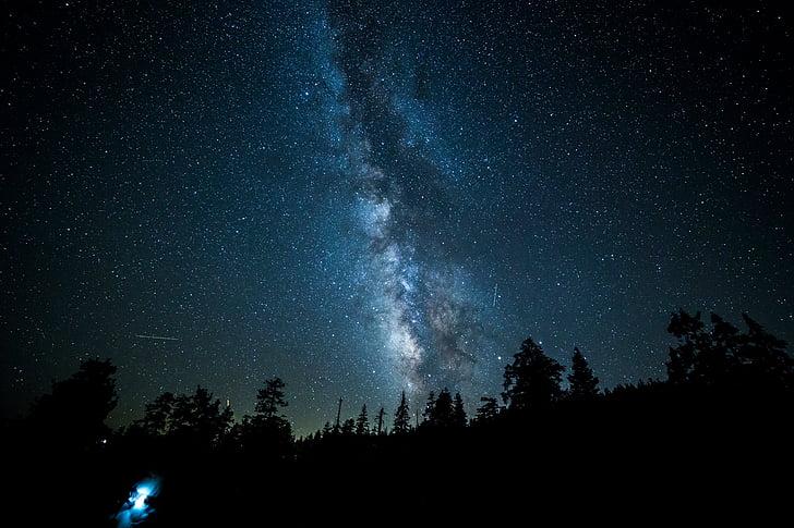 foto, céu, escuro, à noite, estrelas, galáxia, natureza