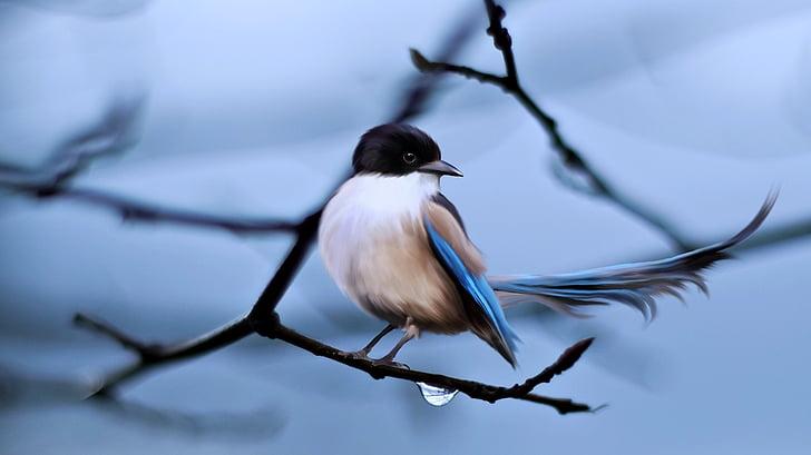 animal, bird, branches, nature, wildlife, feather, beak