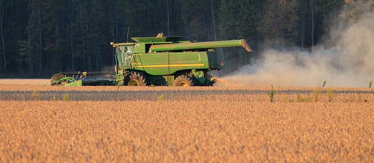 collita, soja, cultiu, l'agricultura, l'agricultura, Segadora, pagès