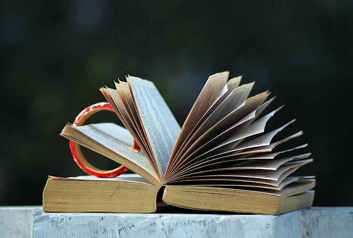 Open boek, lezing, literatuur