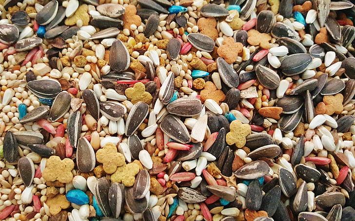 Vogelfutter, Samen, Sonnenblumen-Samen, Feed, gemischte, Vielfalt