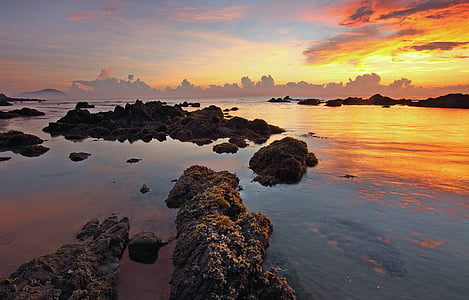 platja, Alba, capvespre, natura, oceà, a l'exterior, roques