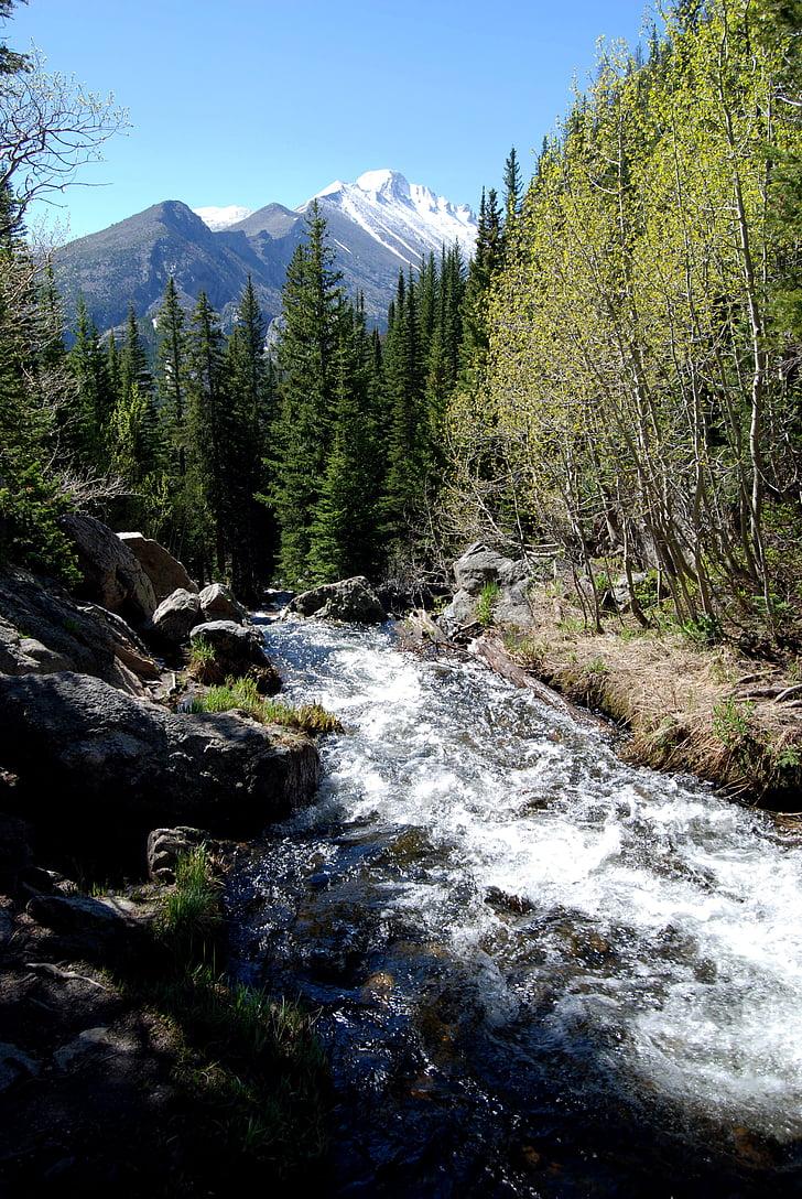 rierol de glacera, camí de llac de somni, Parc Nacional Rocky mountain