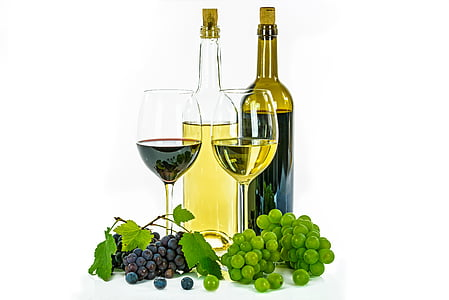 vi blanc, vi negre, l'ampolla, copes de vi, vidre, raïm, fons blanc