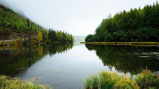 water, trees, wilderness, river, outdoor, grass, mountain