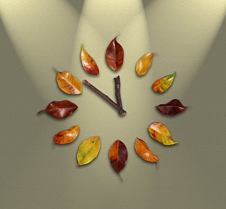 watch, time, leaves, pointers, time passing, minutes, schedule