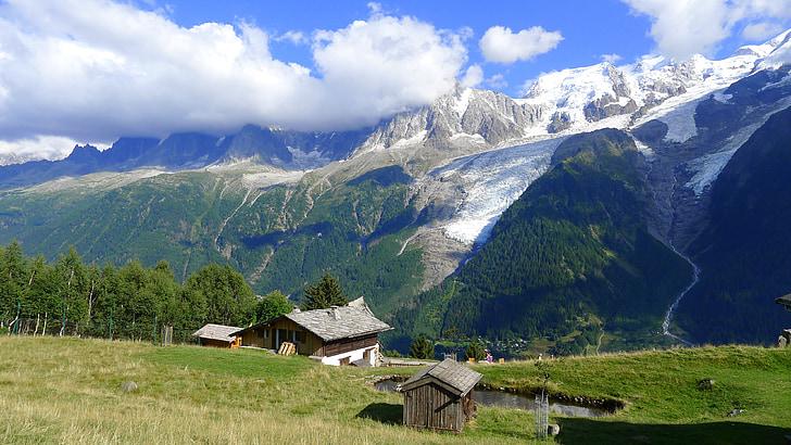 mountain, snow, meadow