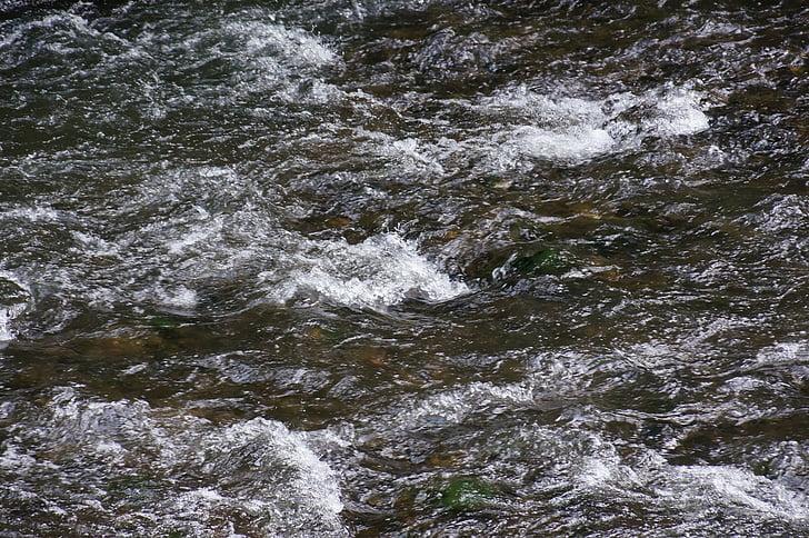 riu, actual, l'aigua