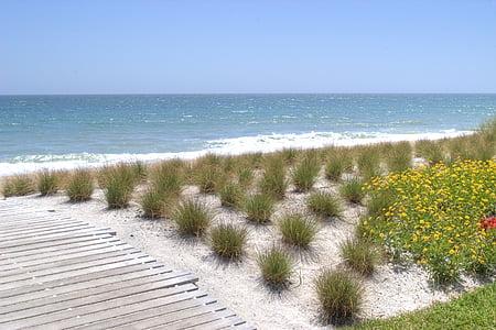 Beach, Florida, napos, nyaralás, óceán, homok, víz