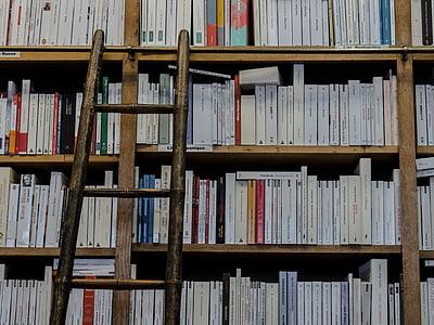 LLIBRERIA, Biblioteca, llibres, escala, l'educació, prestatgeries, llegir