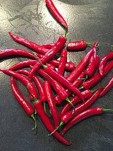 bitxo, vermell, agut, menjar, cultiu de pebre, pebrot vermell, beines