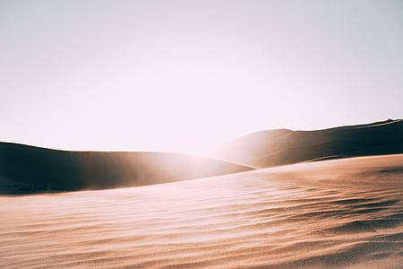 sterile, luminoso, Alba, deserto, paesaggio, sabbia, Dune di sabbia