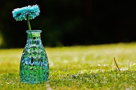 vase, glas, blomst, dekoration, blå, gennemsigtig, Deco