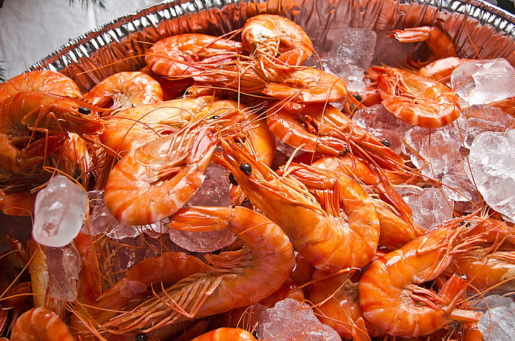 kozice, morski sadeži, okusno, hrane, lupinarjev, restavracija, morje