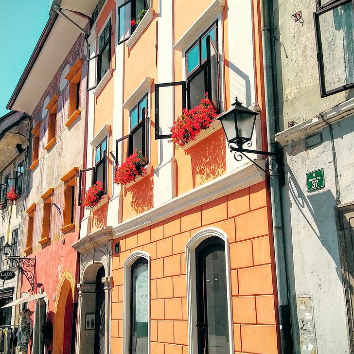 hiša, geranije, stara okna, mediteranske hiše, Evropi, fasada