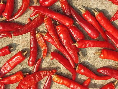 vruće, Crveni, paprike, povrće, začinski, čili, hrana i piće