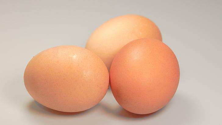 jaja, hrana, krug, smeđa, svježinu, životinja jaje, organski