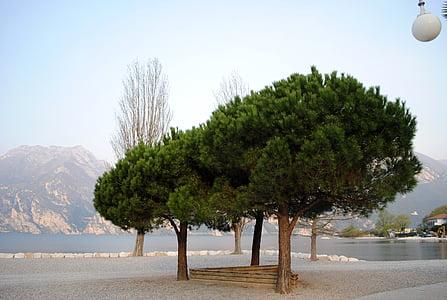 hangulat, Garda, fák, Bank, Lago di garda, Olaszország, Beach