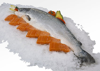 salmon, fillet, fresh, food, seafood, ice, freshness