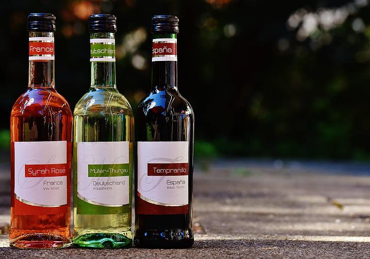 vino, bebida, restaurante, Weinstube, alcohol, botellas, vinos