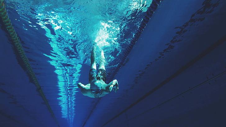 atleta, bussejador, Submarinisme, home, persona, esport, nedador