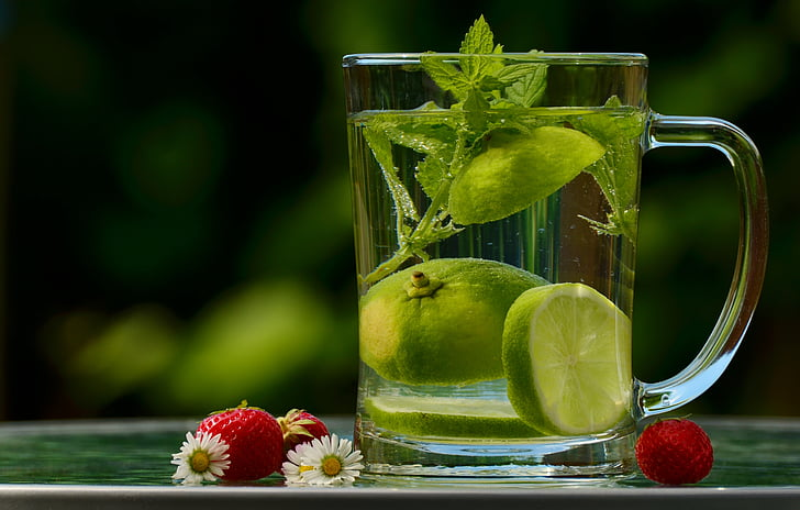 water, drink, detox, detox water, lemon, zitronrnscheibe, lemon balm