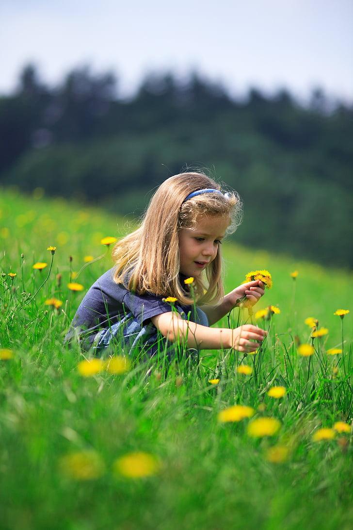 Оденвалд, деца, Момиче, ливада, цвете, природата, дете