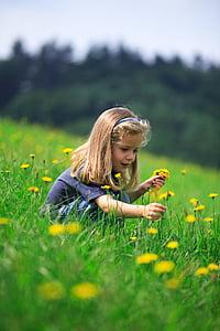 odenwald, children, girl, meadow, flower, nature, child
